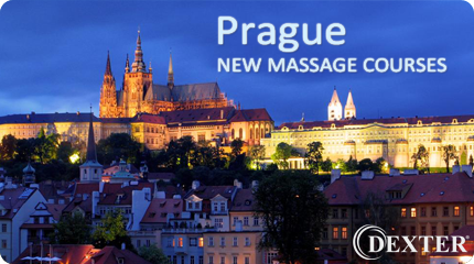Dexter Academy - massage school courses prague